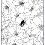Flower Coloring Book Pages Best Of Collection Free Printable Flower Coloring Pages For Kids Best
