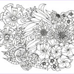 Flower Coloring Book Pages Elegant Gallery Adult Coloring Pages Flowers Plants Garden