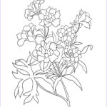 Flower Coloring Pages Beautiful Photos Flower Coloring Pages