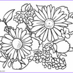 Flower Coloring Pages Cool Photos Free Printable Flower Coloring Pages For Kids