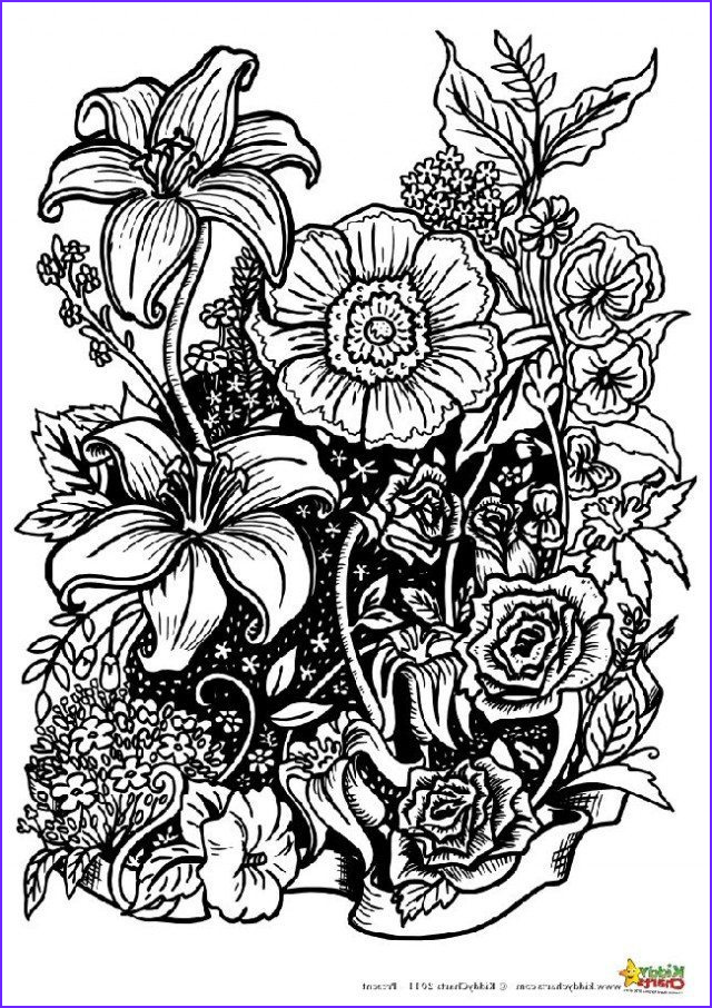 Flower Coloring Pages for Adults New Photos Four Free Flower Coloring Pages for Adults