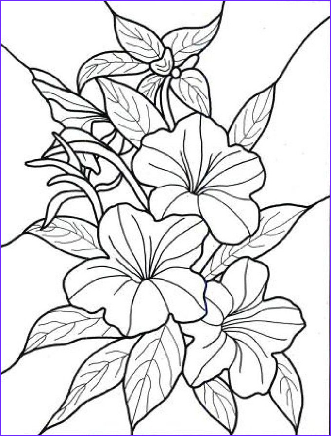 Flower Coloring Pages for Adults Unique Photography Exotic Flower Coloring Pages