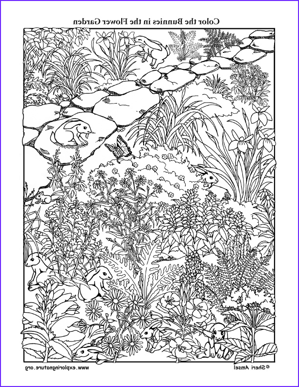Flower Garden Coloring Pages Inspirational Collection Bunnies In the Flower Garden Coloring Page