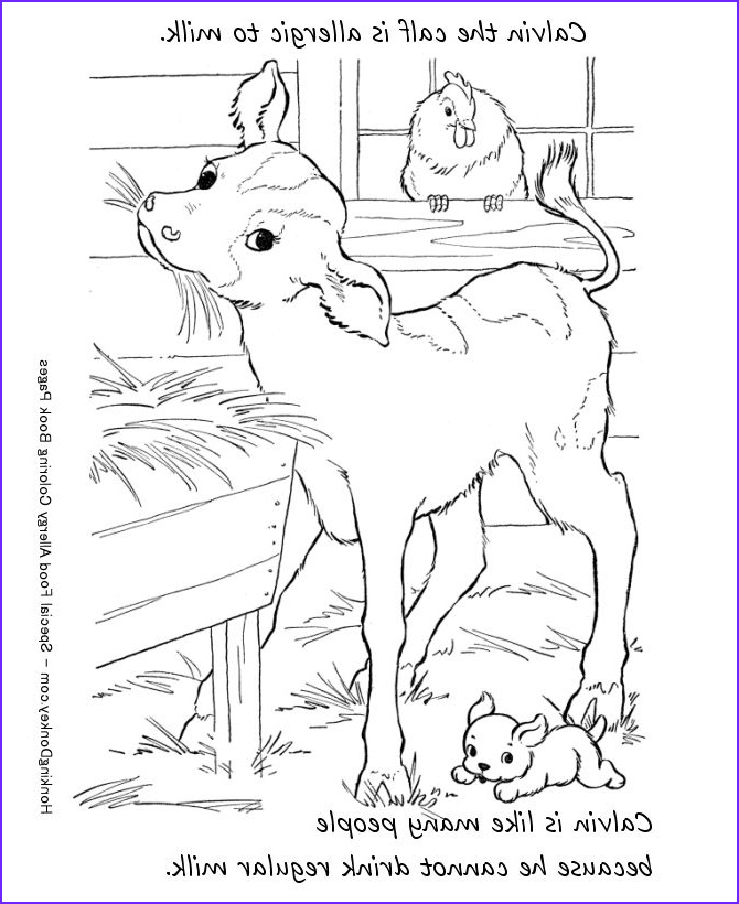 Food Coloring Allergy Elegant Collection 23 Best Food Allergy Colouring Pages Images On Pinterest
