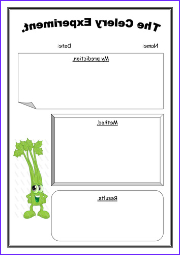 Food Coloring Experiments New Photos the Celery Experiment by Jenkate Teaching Resources Tes