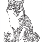 Fox Coloring Sheet Awesome Photos Pin By Muse Printables On Adult Coloring Pages At