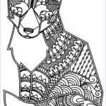 Fox Coloring Sheet Cool Collection Fox Foxes Adult Coloring Pages
