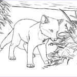 Fox Coloring Sheet Luxury Gallery Free Printable Fox Coloring Pages For Kids
