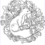 Fox Coloring Sheet Luxury Photos Fancy Fox Pages Coloring Pages