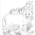 Fox Coloring Sheet New Images Free Printable Fox Coloring Pages For Kids