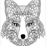 Fox Coloring Sheet New Photography Beutiful Fox Head Foxes Adult Coloring Pages