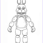 Freddy Coloring New Stock Old Bonnie Free Coloring Pages