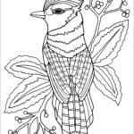 Free Bird Coloring Pages Inspirational Stock Coloring Pages