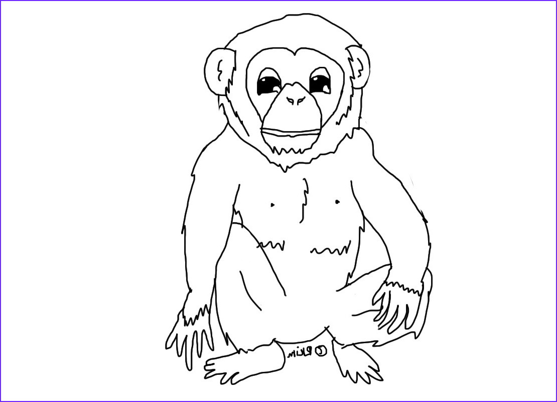 chimpanzee coloring pages