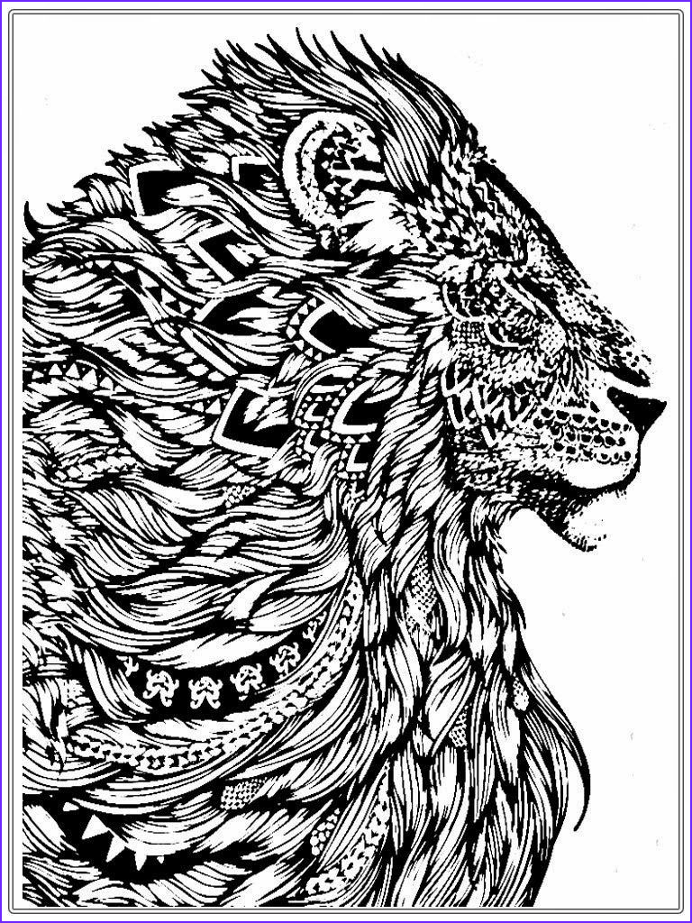 Free Coloring Book Pages Best Of Gallery Free Lion Coloring Pages for Adult