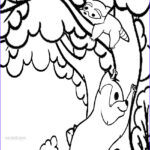 Free Coloring Book Pages Cool Collection Printable Raccoon Coloring Pages For Kids