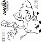 Free Coloring Book Pages Elegant Photos Moana Coloring Pages