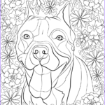 Free Coloring Book Pages For Adults New Images Dog Coloring Pages For Adults Best Coloring Pages For Kids