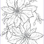 Free Coloring Page Com Beautiful Collection Free Printable Poinsettia Coloring Pages For Kids
