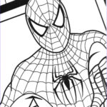 Free Coloring Pages For Kids Beautiful Photos Free Printable Spiderman Coloring Pages For Kids