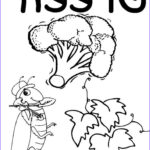Free Coloring Pages For Preschoolers Awesome Photography Best 25 Preschool Coloring Pages Ideas On Pinterest