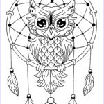 Free Coloring Pictures Awesome Photos Dream Catcher Coloring Pages Best Coloring Pages For Kids