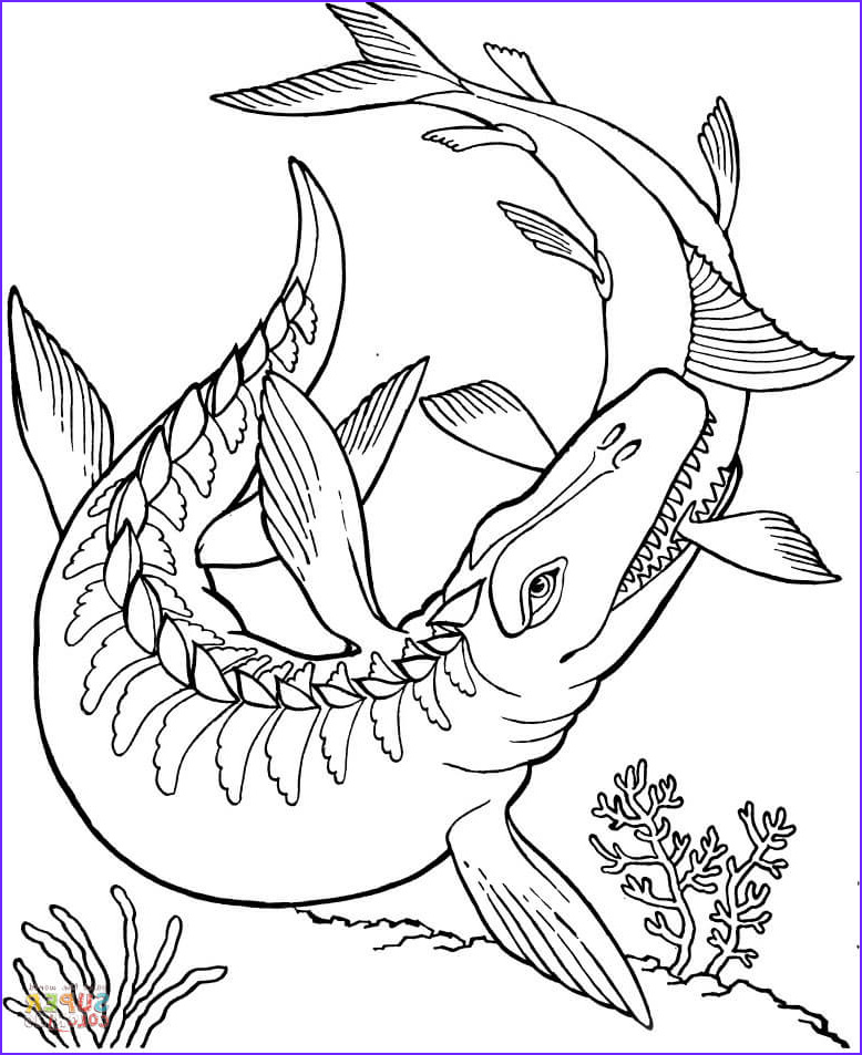 Free Dinosaur Coloring Pages Inspirational Photography Mosasaurus Dinosaur Coloring Page