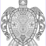 Free Downloadable Adult Coloring Pages Awesome Photos 20 Gorgeous Free Printable Adult Coloring Pages …