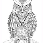 Free Downloadable Adult Coloring Pages Elegant Stock Owl Coloring Pages For Adults Free Detailed Owl Coloring