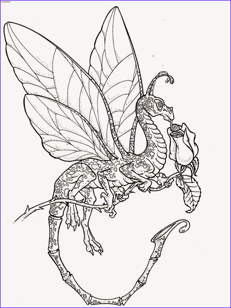 Free Dragon Coloring Pages Cool Photos Coloring Pages Dragon Coloring Pages Free and Printable