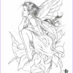 Free Fairy Coloring Pages Inspirational Photos Enchanted Designs Fairy & Mermaid Blog Free Fairy