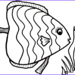 Free Fish Coloring Pages New Image 8 Fish Coloring Pages Jpg Ai Illustrator