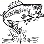 Free Fish Coloring Pages New Images Bass Fish Outline Clipartion