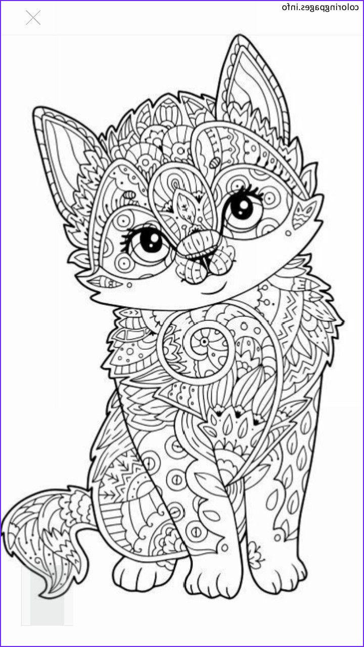 Free Mandala Coloring Pages Beautiful Photos Cat Animal Mandala Coloring Pages Mandala Coloring Pages