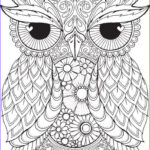 Free Mandala Coloring Pages For Adults Awesome Image Get This Mandala Coloring Pages For Adults Free Printable