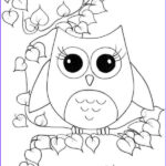Free Owl Coloring Pages Luxury Image Free Coloring Sheets Animal Owl For Kids