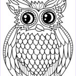 Free Owl Coloring Pages Luxury Photos Coloring Pages