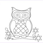Free Owl Coloring Pages Unique Image Make Any Picture A Coloring Page With Ipiccy Ipiccy