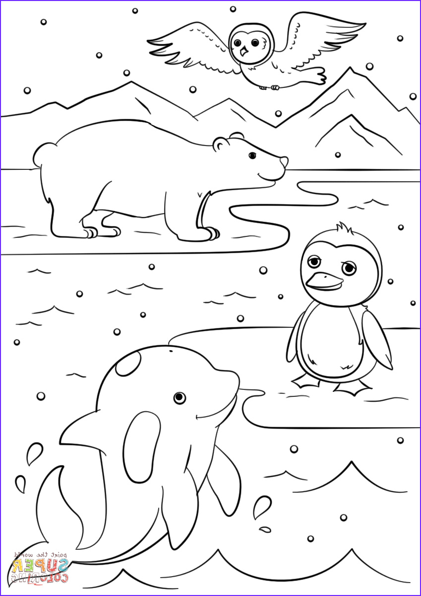 Free Printable Animal Coloring Pages Beautiful Gallery Winter Animals Coloring Page