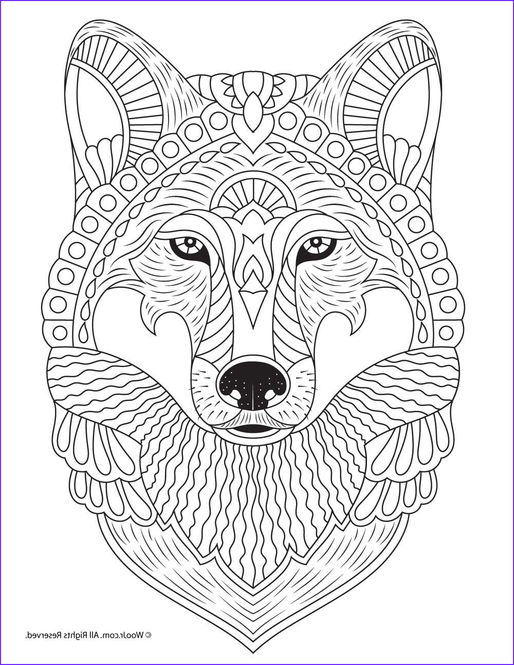 Free Printable Animal Coloring Pages Best Of Stock Wolf Adult Coloring Page