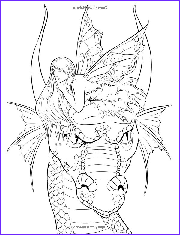 fantasy dragons fairy coloring for adults art page