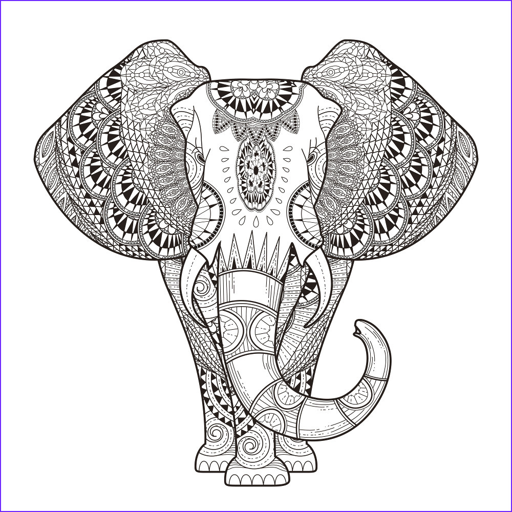 Free Printable Coloring Sheets for Adults Elegant Gallery Adult Coloring Pages Animals Best Coloring Pages for Kids