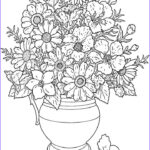 Free Printable Flower Coloring Pages For Adults Beautiful Collection Coloring Pages Of Flowers Printable Free