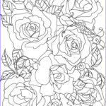 Free Printable Flower Coloring Pages For Adults Beautiful Collection The 25 Best Flower Coloring Pages Ideas On Pinterest