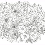 Free Printable Flower Coloring Pages For Adults Cool Collection Adult Coloring Pages Flowers Plants Garden