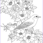 Free Printable Flower Coloring Pages For Adults Elegant Image Adult Coloring Pages Printable Free