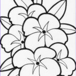 Free Printable Flower Coloring Pages For Adults New Photos Coloring Pages Of Flowers For Teenagers Difficult
