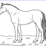 Free Printable Horse Coloring Pages Awesome Collection Free Printable Horse Coloring Pages For Kids