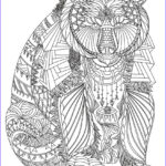 Free Printable Mandalas Coloring Pages Adults Luxury Collection Pin On Colorings