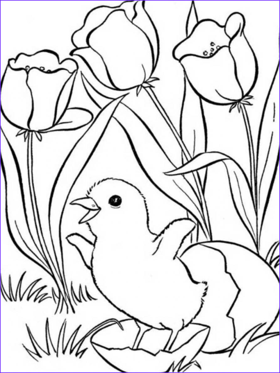 Free Printable Spring Coloring Pages Beautiful Image Spring Coloring Pages